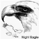 NightEagle's picture